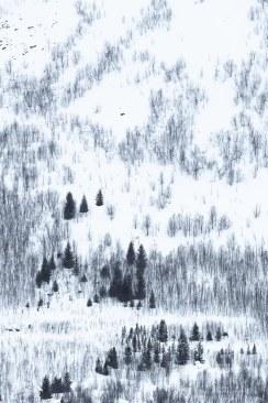 20180109-Norway_-2